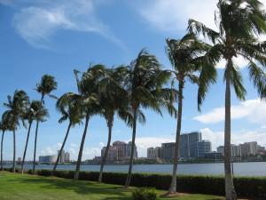 west palm beach hbtv hemp beach tv