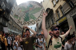 Czechs marijuana support hbtv hemp beach tv
