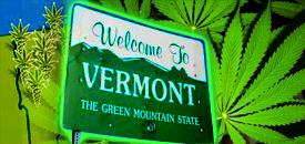 Vermont marijuana hbtv hemp beach tv