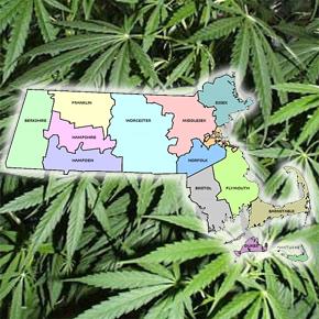 mass marijuana hbtv hemp beach tv