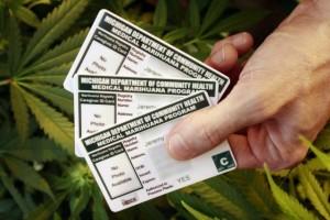 michigan marijuana cards hbtv hemp beach tv