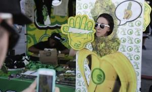 seedless booth marijuana hbtv hemp beach tv