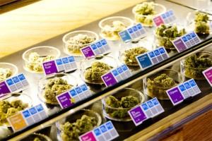 marijuana store hbtv hemp beach tv