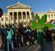 Uruguay's President Quietly Signs Marijuana Legalization Bill