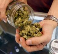 Medical Marijuana Dispensary Licenses Set To Be Awarded In Massachusetts