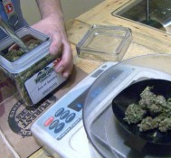 Pot Groups Wage Weed Friendly Bets To Highlight Reform In Super Bowl States