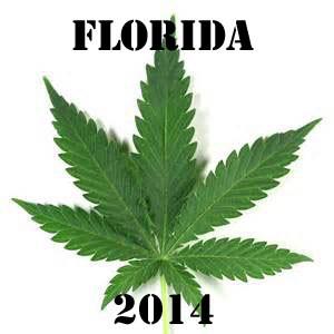 florida medical marijuana 2014 hbtv hemp beach tv