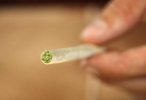 hide marijuana joint spanish police hbtv hemp beach tv