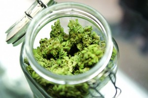 Pennsylvania Voters Support Medical Marijuana hbtv hemp beach tv