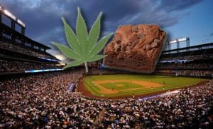 marijuana brownie colorado rockies baseball consessions hbtv hemp beach tv