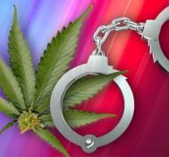 Legalizing Medical Marijuana May Actually Reduce Crime, Study Says