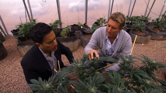 sanjay gupta medical marijuana hbtv hemp beach tv 420