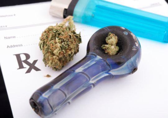 marijuana bowl packed hbtv hemp beach tv