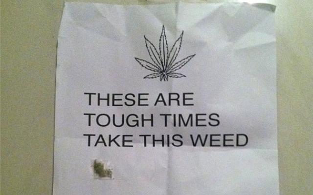 times are tough take this weed hbtv hemp beach tv