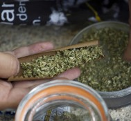 Oregon Marijuana Legalization Vote Erupts in Name Calling