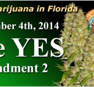 Florida's amendment 2 for medical pot could get a boost