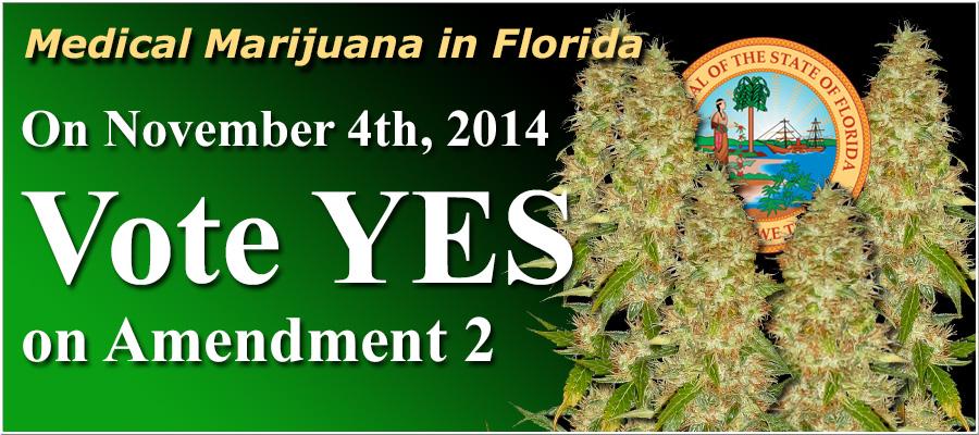 medical marijuana florida yes on 2 hbtv hemp beach tv