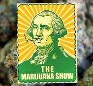 Auditions begin for marijuana based reality show