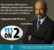 Medical marijuana group to TV stations: stop running 'false' ad by opponents