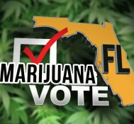 Medical Marijuana Making Noise In Florida