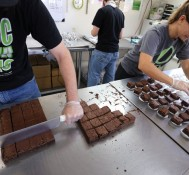 Colorado proposes edible marijuana ban, then retreats