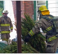 Fire Crews Save Marijuana Harvest & Dog from house fire
