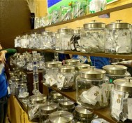 Colorado pot sales fall, Can it be true?