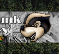 Skunk Daily